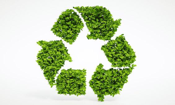 Der erste Nachhaltigkeitsbericht